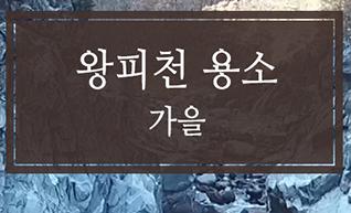 울진 불영계곡과 왕피천 디지털 문화 콘텐츠 '왕피천 용소 가을'