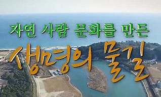 울진 불영계곡과 왕피천 디지털 문화 콘텐츠